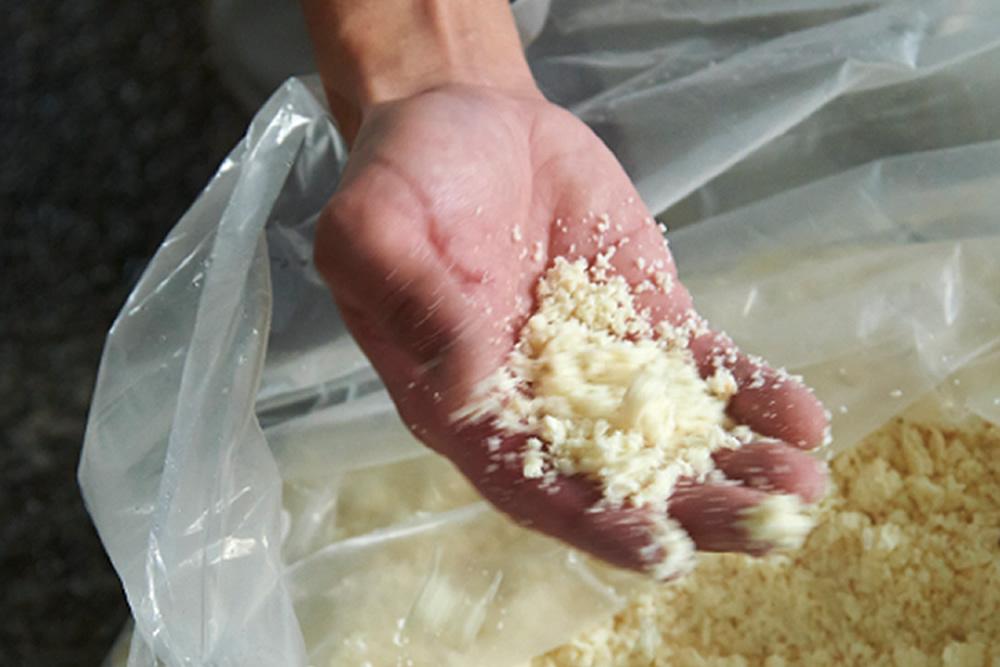 豆乳の製造工程 おから