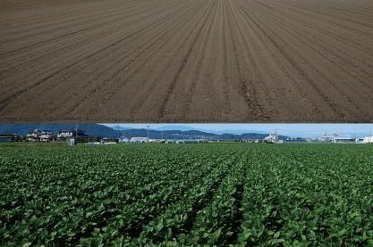 大豆農家にインタビュー!質のいい大豆を育てるには、質のいい土をつくるところから